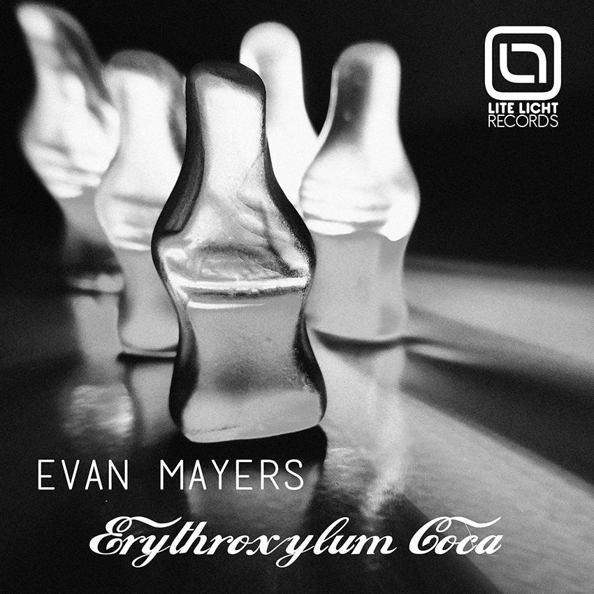 Erythroxylum-Coca